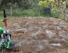 Ζεόλιθος με οργανικό λίπασμα σε κτήμα, Αλεξανδρούπολη